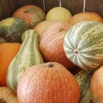 Food on Fridays: When the Frost is on the Punkin