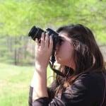 Curiosity Journal: March 21, 2012