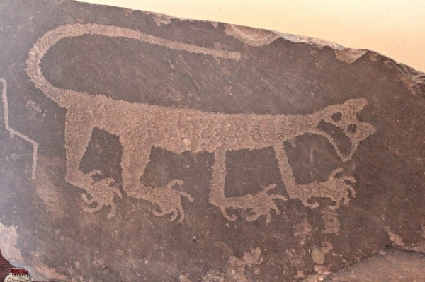 mountain lion petroglyph