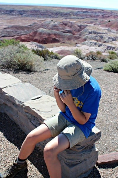 painted desert bored