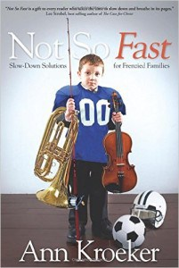 Not So Fast - Ann Kroeker