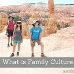 What Is Family Culture – Interview with Dr. Helen Fagan