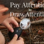 #27: Pay Attention to Draw Attention