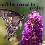 #47: Don't Be Afraid to Evolve
