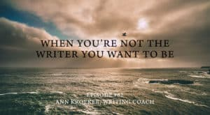 When you're not the writer you want to be - ep 62 Ann Kroeker Writing Coach