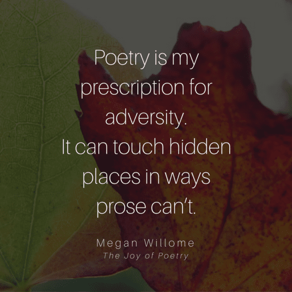 Poetry is my  prescription for adversity.  It can touch hidden places in ways  prose can't. - Megan Willome, The Joy of Poetry