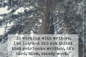 It's Not Talent That Gets Books Written