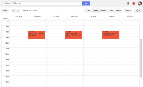Google Calendar Screenshot Sample Entries