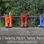 Ep 135: What Do I Write Next – Why Not a Series?